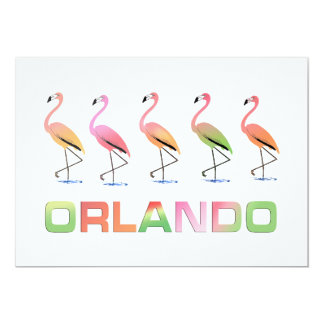 March of the Tropical Flamingos ORLANDO Card