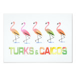 March of the Tropical Flamingos TURKS & CAICOS 5x7 Paper Invitation Card
