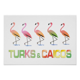 March of the Tropical Flamingos TURKS & CAICOS Poster