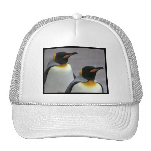 Marching Penguins Baseball Hat