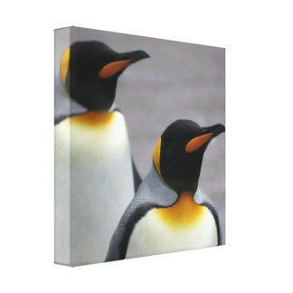 Marching Penguins Canvas Print