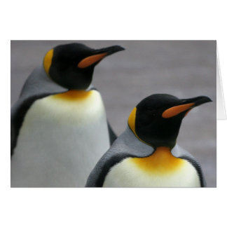 Marching Penguins Greeting Card