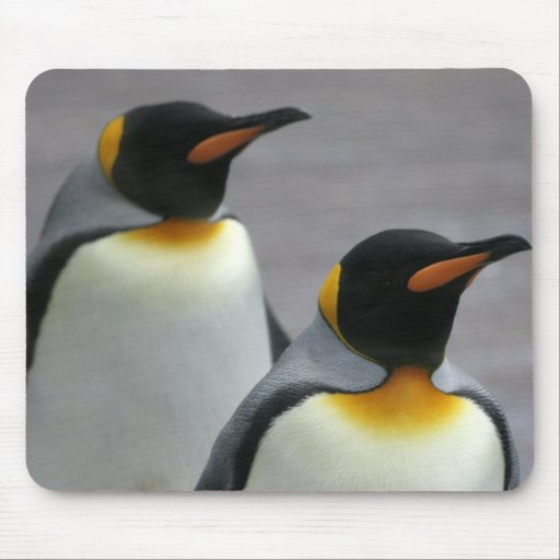 Marching Penguins Mouse Pad