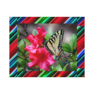 Marco abstracto de las rayas con la mariposa y la lona estirada galerias