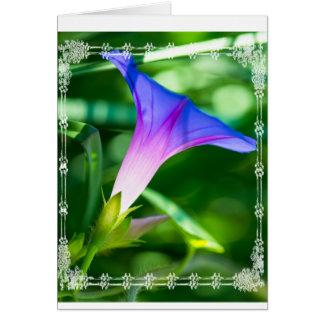 Marco atado blanco de la correhuela tarjeta de felicitación