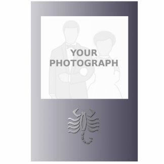 Marco de la foto de SignSilver de la estrella del Fotoescultura Vertical