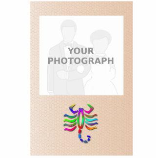 Marco de la foto del arco iris de la muestra de la fotoescultura vertical