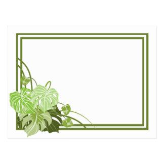 Marco de la planta tropical tarjetas postales