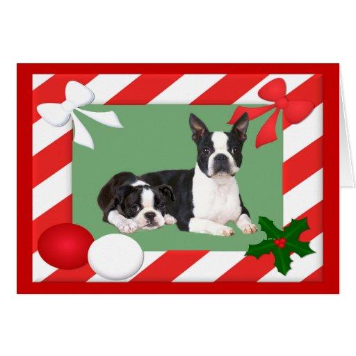 Marco de la tarjeta de Navidad de Boston Terrier