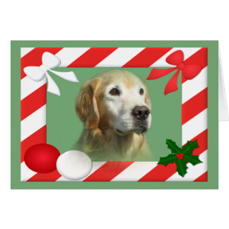 Marco de la tarjeta de Navidad del golden retrieve