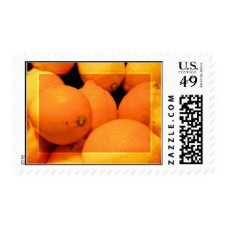 Marco del arte de la foto de los limones sello