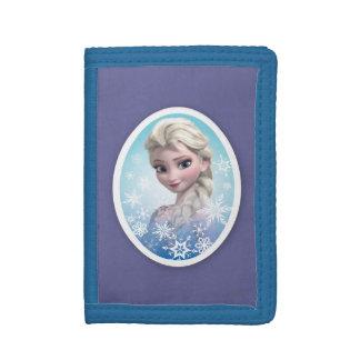 Marco del copo de nieve de Elsa el |