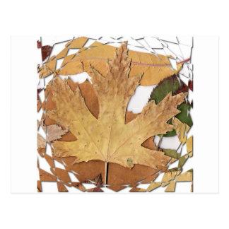 Marco del mosaico de las hojas de otoño postal