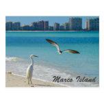 marco island, marco island beaches, marco, island,