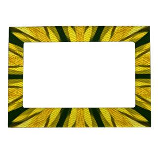 Marco magnético abstracto del diseño amarillo y ve marcos magnéticos de fotos