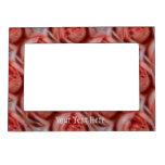 Marco magnético de las flores color de rosa rosada marcos magneticos para fotos