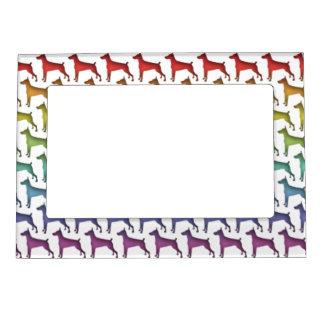 Marco magnético del arco iris del Doberman Marcos Magneticos Para Fotos