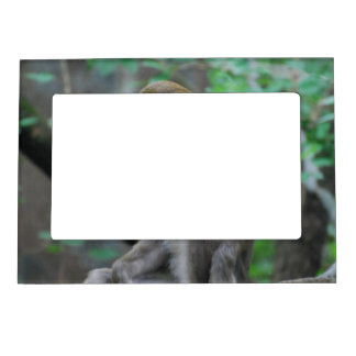 marco magnético del marco - modificado para requis marcos magnéticos para fotos