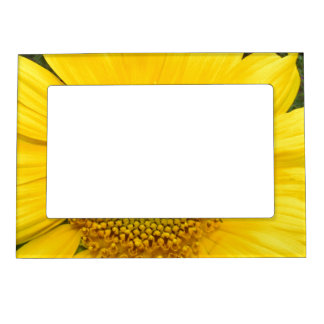 Marco magnético floral foto de imanes