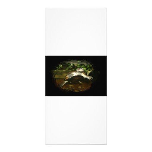 Marco marrón Necked lateral africano lindo del neg Lonas Personalizadas