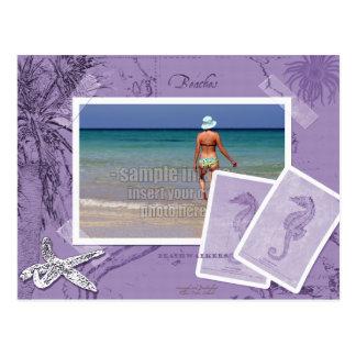 Marco púrpura de la foto del collage del mapa del postal