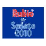Marco Rubio for Senate 2010 Star Design Post Card