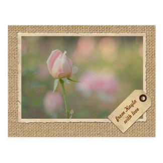 Marco subió otoño rosado precioso del papel del vi postal