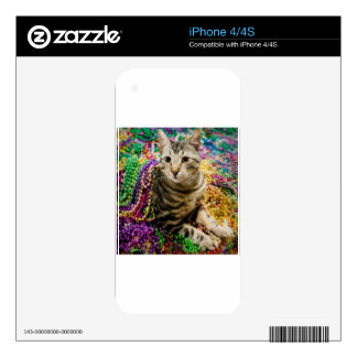 Mardi Gras Cat Decal For The iPhone 4S
