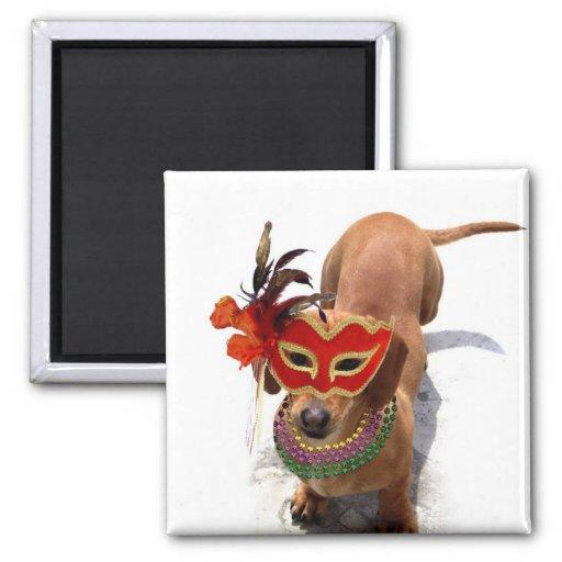 Mardi Gras Dachshund Dog magnet