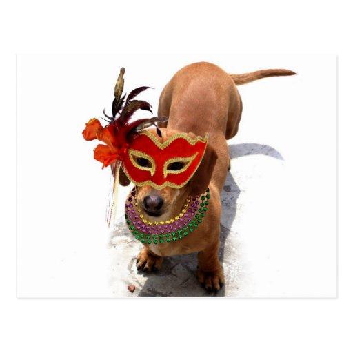 Mardi Gras Dachshund Dog postcard