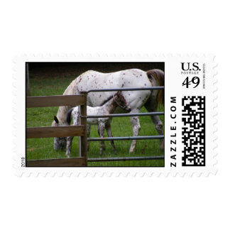 Mare and Colt Postage