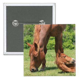 Mare and Colt Square Pin