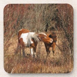Mare and Foal Beverage Coasters