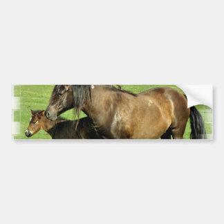 Mare and Foal Bumper Sticker