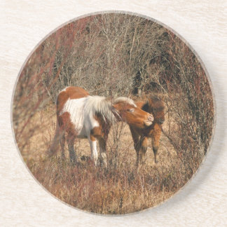 Mare and Foal Coasters