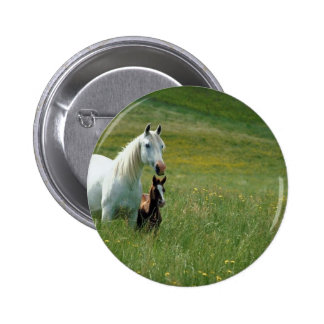 Mare and Foal in Tall Grass Pinback Button