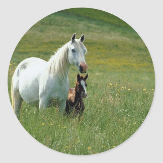Mare and Foal in Tall Grass Classic Round Sticker