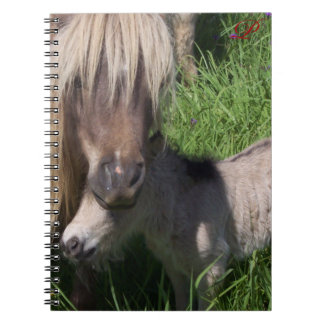 Mare and Foal Notebook