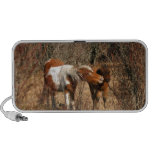 Mare and Foal Notebook Speakers