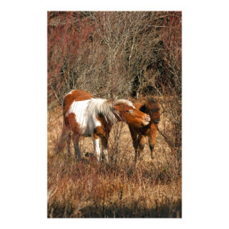 Mare and Foal Personalized Stationery