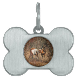 Mare and Foal Pet Tag