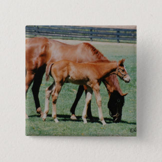 Mare and Foal Pin Button