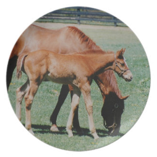 Mare and Foal Plate