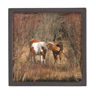 Mare and Foal Premium Trinket Boxes