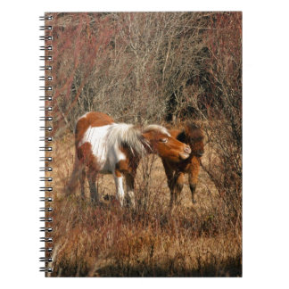 Mare and Foal Spiral Notebooks