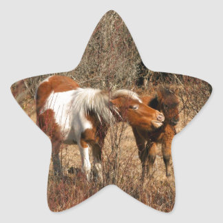 Mare and Foal Star Stickers