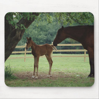 Mare and Foal Under Tree Mouse Pad