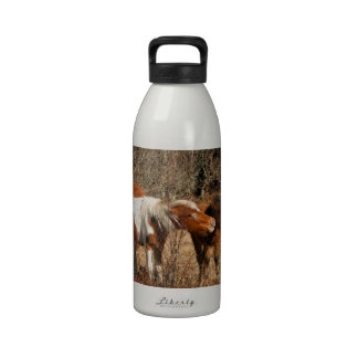 Mare and Foal Water Bottle