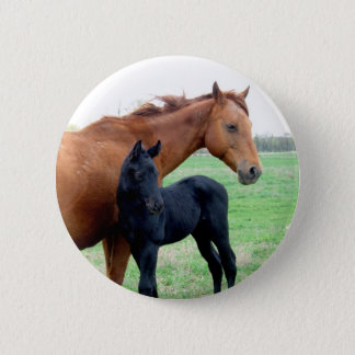 Mare and Her Colt Pinback Button