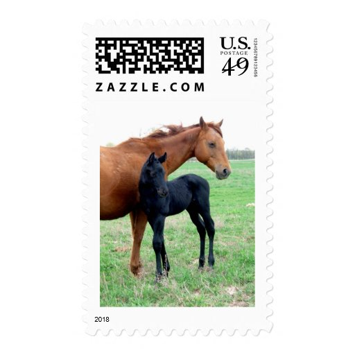 Mare and Her Colt Stamps